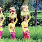 DwiBhumi Bali offerandes